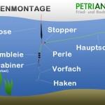 Posenmontage freilaufend bzw. Wagglermontage