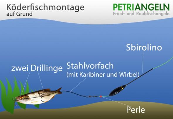 Köderfischmontage auf Grund
