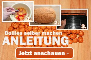 Boilies machen - Anleitung