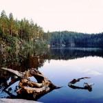 Schweden Angelurlaub ist gebucht